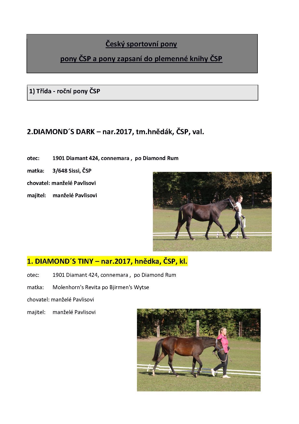Katalog 2_5