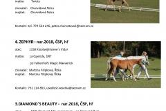 Katalog 2_12