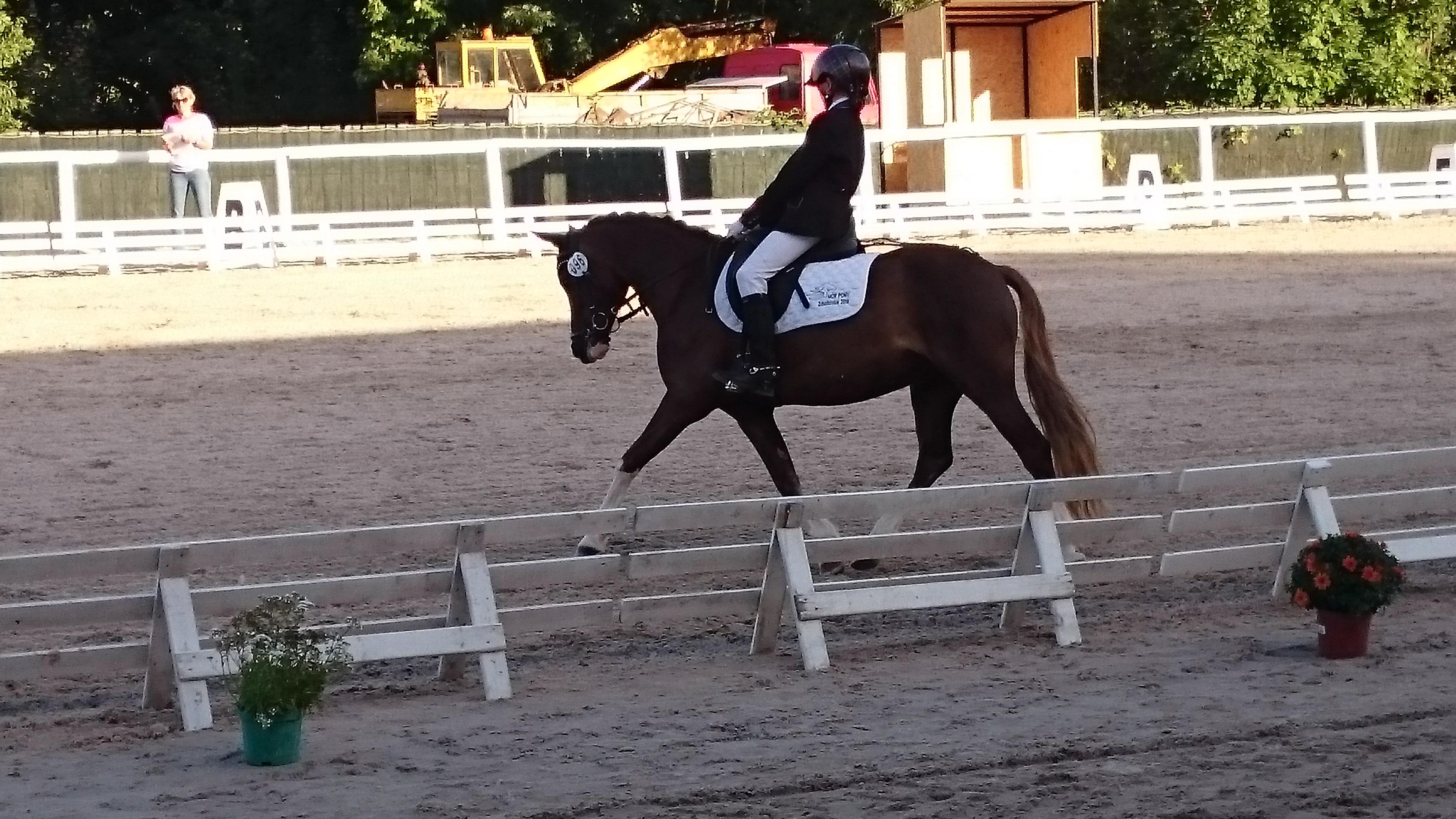 MČR pony 2016 – Zduchovice