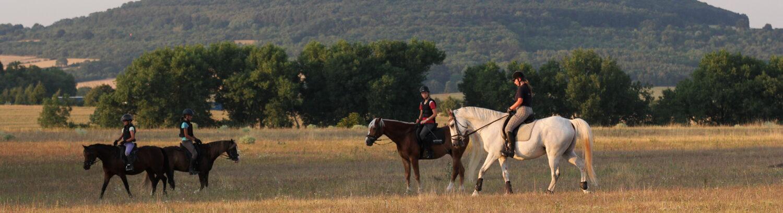 Jezdecká  stáj  U Ryzáčka